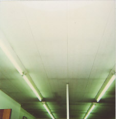 天井ジプトン貼替